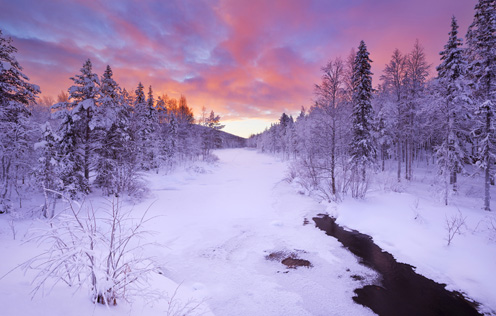 Lapland MICE destination of Boutique DMC Iceland